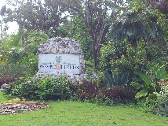 Pineapple Fields Resort: Hotel sign