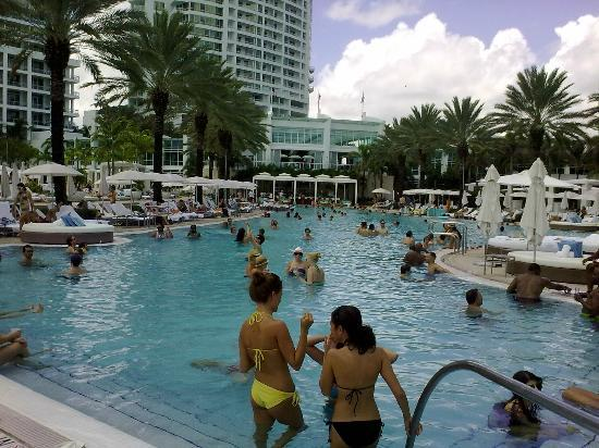 sun lungers by he pool picture of fontainebleau miami beach miami beach tripadvisor. Black Bedroom Furniture Sets. Home Design Ideas