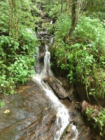 The Cataloochee Ranch: waterfall toward the end of a hike