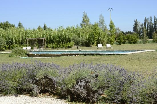 La Garance en Provence: The pool and grounds