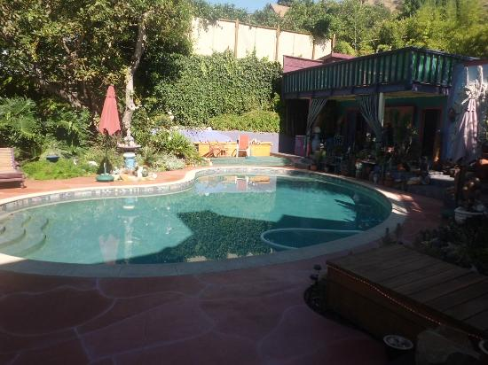 Hollywood Bed & Breakfast: piscine