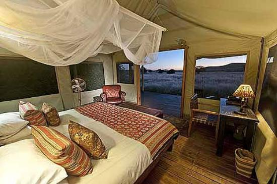 Desert Rhino Camp