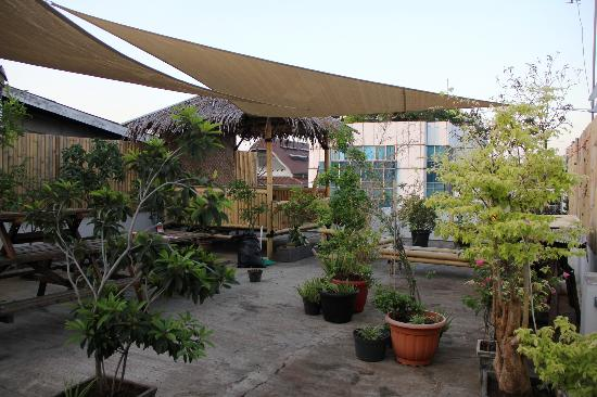 Six Degrees: Roof Top Area