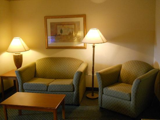 Country Inn & Suites By Carlson, Montgomery East: Living room area