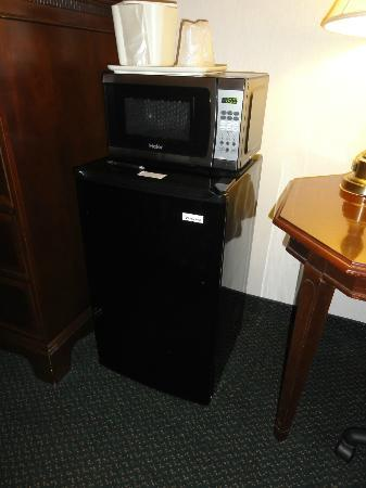 Rodeway Inn Wooster: Micro and fridge