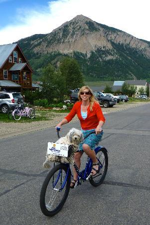 Purple Mountain Lodge Bed &amp; Breakfast and Day Spa: Loved the bikes for use by guests!