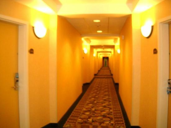 Comfort Suites: well lit hallways w security cameras