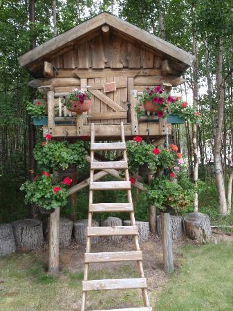 Alaska's Harvest B&B: Little Cache Out Front