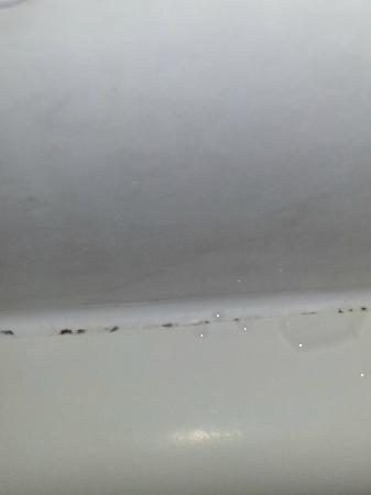 Travelodge Virginia Beach: mold in the shower