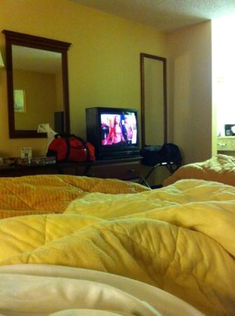 Quality Inn: a view from the bed