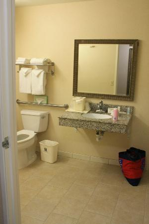 Comfort Inn and Suites near Universal Studios: Bathroom