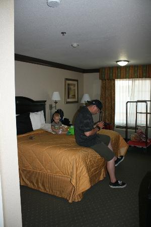 Comfort Inn and Suites near Universal Studios: Room