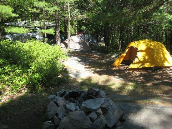 Somes Sound View Campground: site no. 39