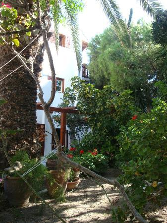 Villa Pinelopi Apartments & Rooms: jardin