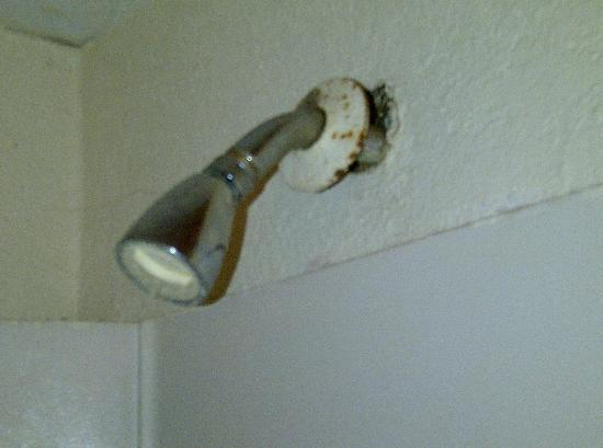 Rodeway Inn Kissimmee: Loose (and dirty) showerhead.