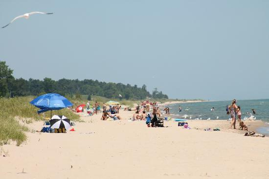 On the beach at Kohler-Andrae State Park near Sheboygan, WI - July 2012