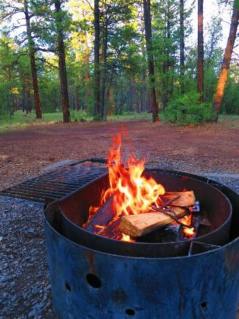 Dogtown Lake Campground: Campfire with view