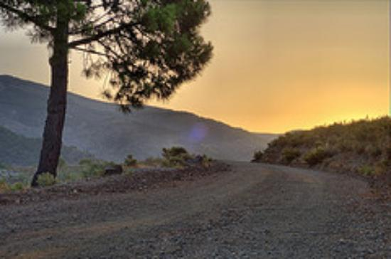 Canillas de Albaida, Espagne : The track past the villa at sunrise