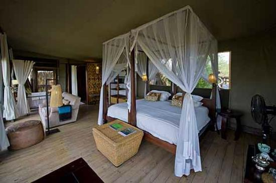Wilderness Safaris Shumba Camp