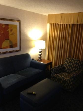 ‪‪Embassy Suites Hotel Cincinnati - Rivercenter / Covington‬: Sleeper Sofa - Living Area‬