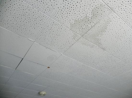 Americas Best Value Inn Ronks: old water stain on ceiling tiles