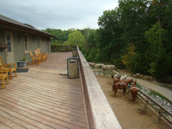 Rawhide Ranch: View from the deck