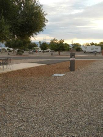 Lazydays RV Campground: Photo of the lot