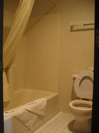 Great Lakes Inn: Bathroom