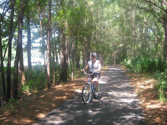 Quality Inn & Suites Hilton Head: Trail along the highway, right outside the hotel