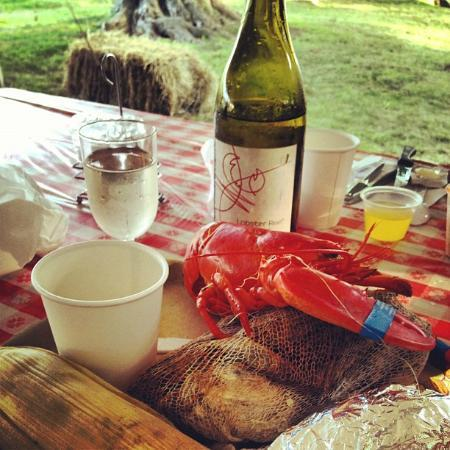 Recompence Shore Campground at Wolfe's Neck Farm: Lobster/Clam Bake!