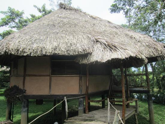 Cotton Tree Lodge: Exterior of the room (Cabana)