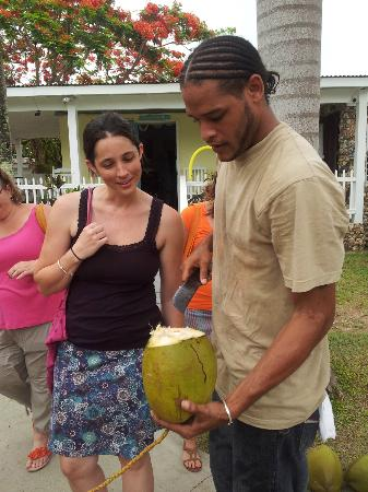 Cottages by the Sea: Fresh coconut water! Mmm!