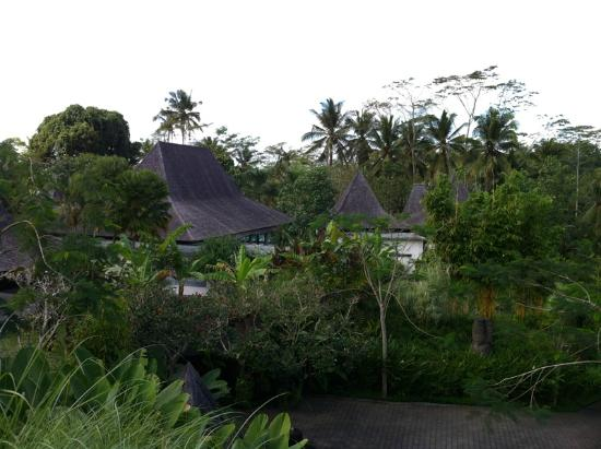Pandawas Villas: View of Pandawas from the Buddy bar