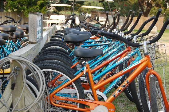 Ocracoke Harbor Inn : The Harbor Inn offers bikes to rent to tour the island.