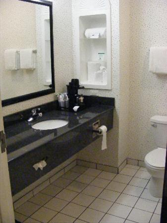 Holiday Inn Express Beech Grove-Indianapolis Southeast: Bathroom vanity