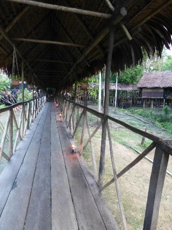 Muyuna Amazon Lodge: Walkway to the main lodge