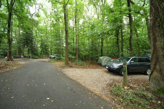 Pohick Bay Regional Park Campgrounds: Privacy between neighbors