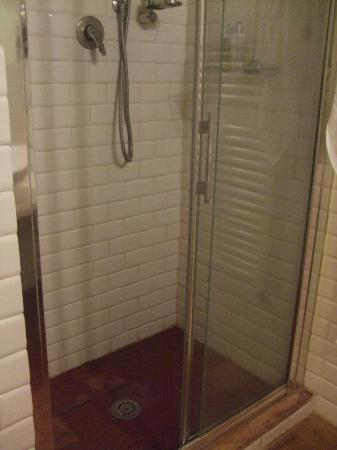 Villa Dini: Large shower, no smells