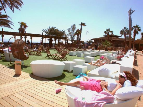U Coral Beach Club Eilat: Hotel beach