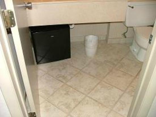 BEST WESTERN Bay Harbor Hotel: Refrigerator on bathroom floor