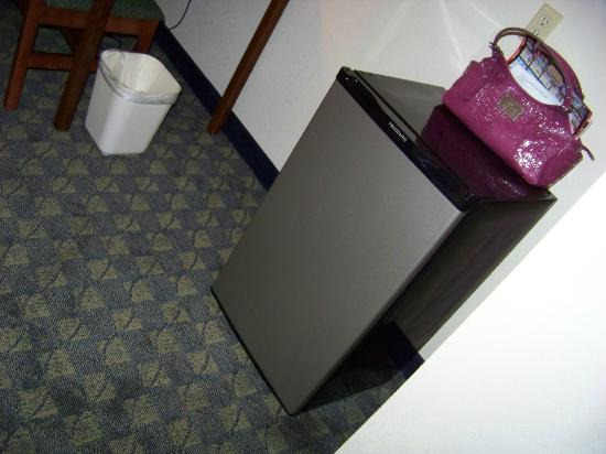 Castle Rock Resort & Waterpark: nice fridge & clean carpet