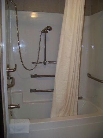 Castle Rock Resort & Waterpark: handicapped shower, very clean