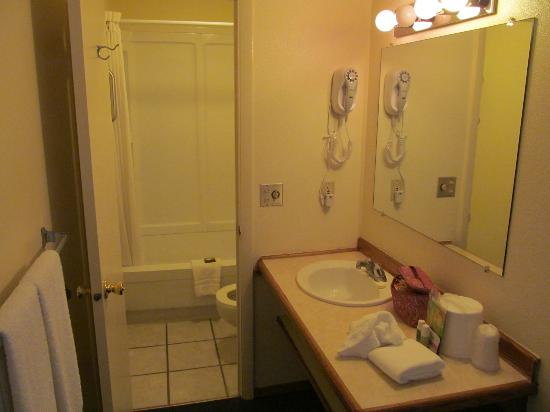 Virginian Lodge: bathroom