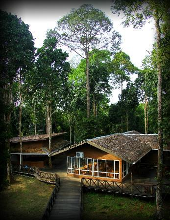 ‪Borneo Nature Lodge‬
