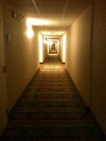Homewood Suites by Hilton Baltimore-BWI Airport: long hallway