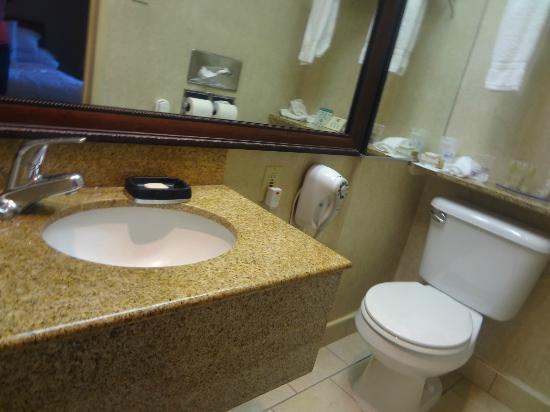 BEST WESTERN Royal Palace Inn & Suites: small bathroom