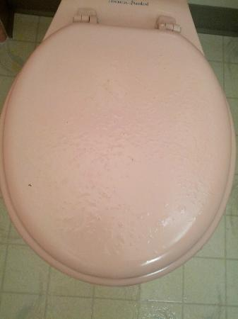 Quality Inn Uptown: Rusted toilet lid