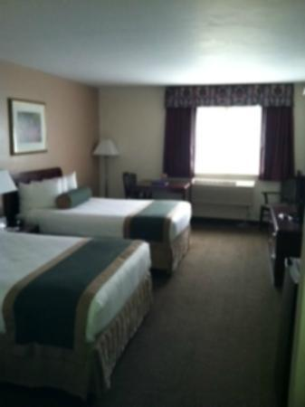 BEST WESTERN New Baltimore Inn: 2 bed room