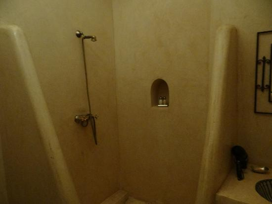 Riad Palmier: shower