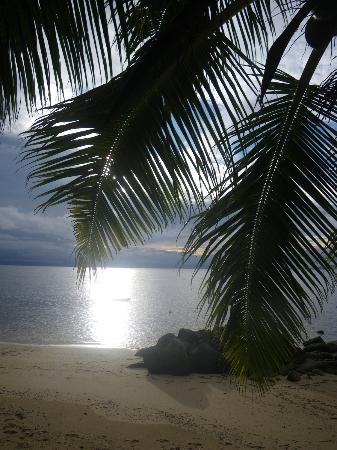 Taveuni Island Resort & Spa: Beach